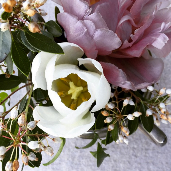 field-to-vase-kendra-aronson-orange-blossom-creative