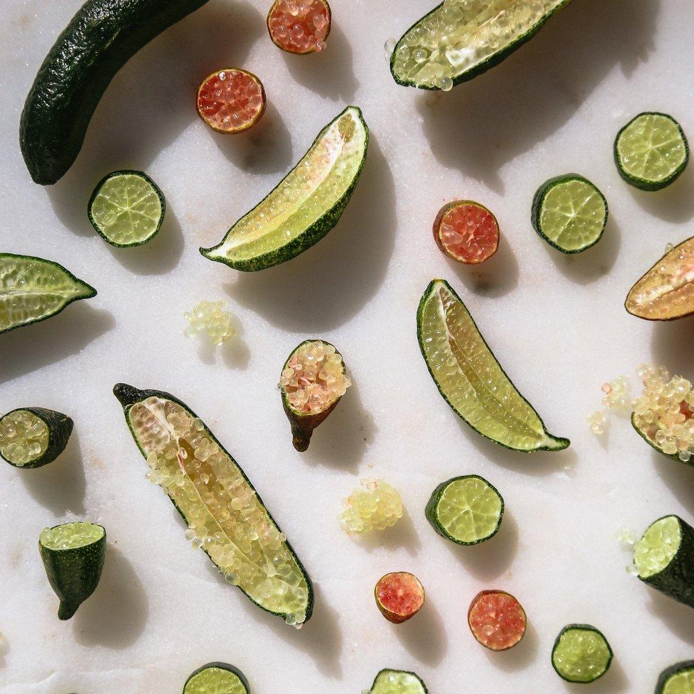 kendra-aronson-edible-slo-finger-limes-105.jpg