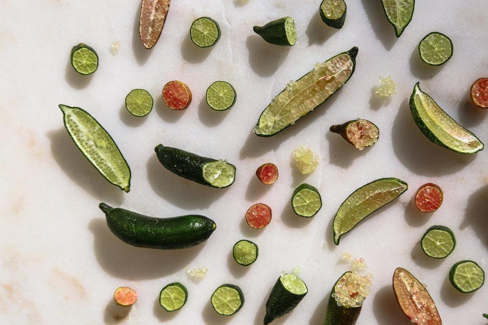 kendra-aronson-edible-slo-finger-limes