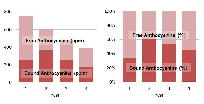 Phenolics levels during cellaring.jpg