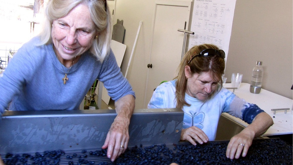 4 Rosemary Rossi & Andy Martin sorting