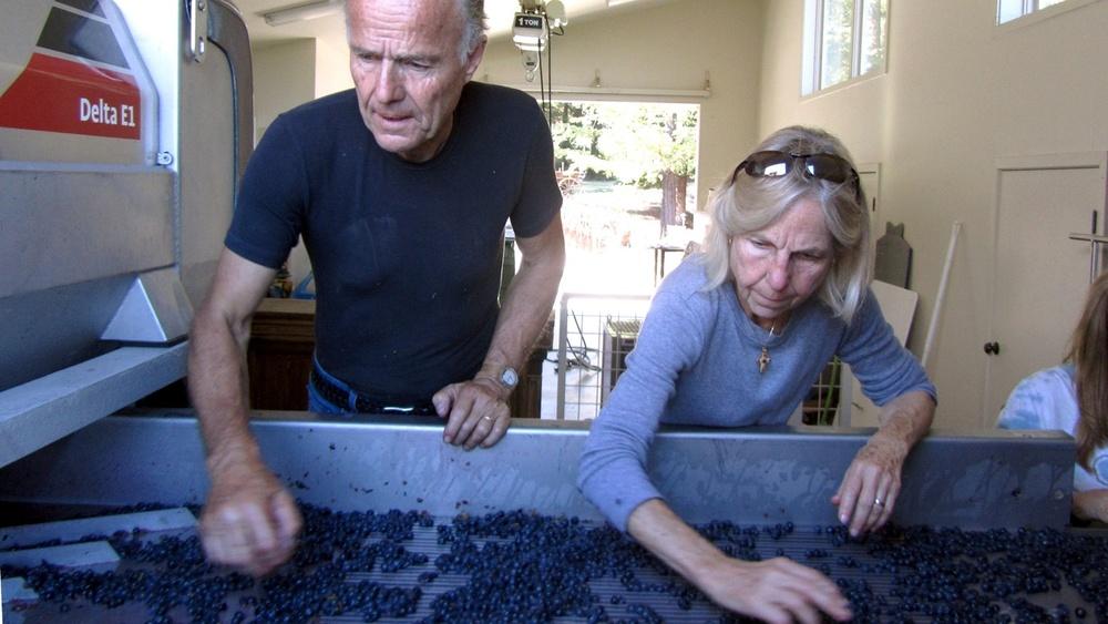 5 Rosemary Rossi and me sorting berries