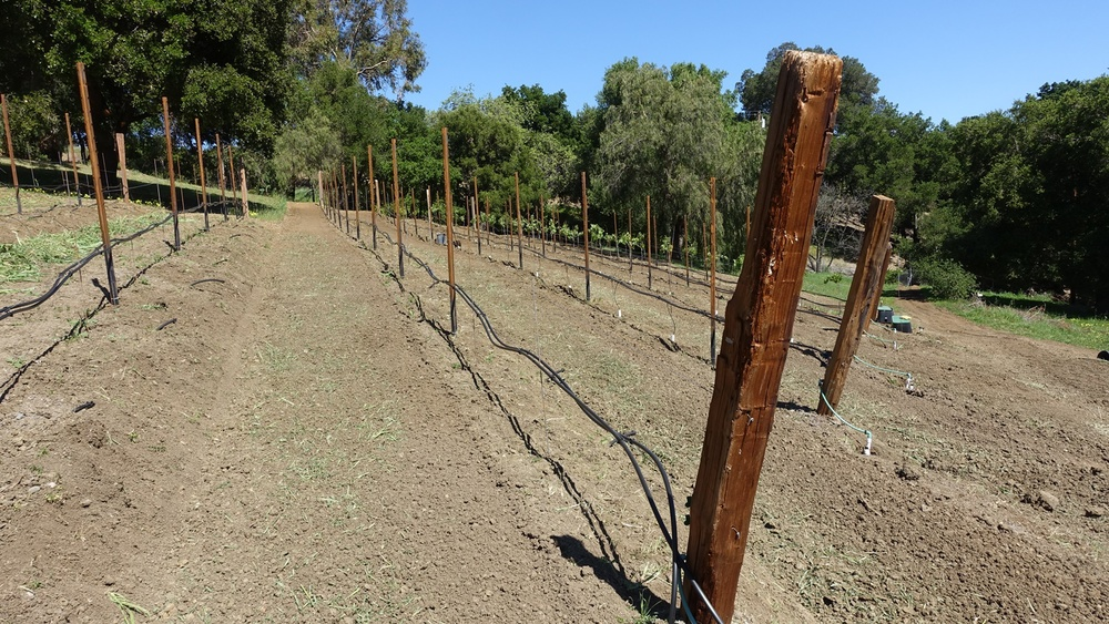 9 Pull in drip irrigation tubing