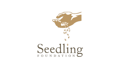 Seedling Foundation   Youth mentoring and campus beautification for public school districts.