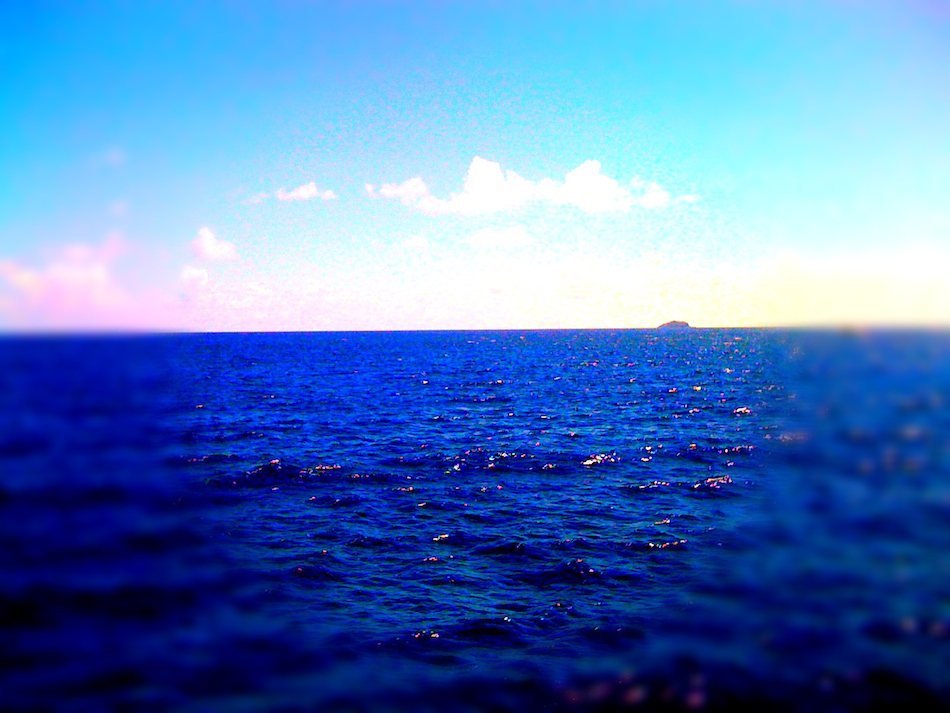 Goodbye Island