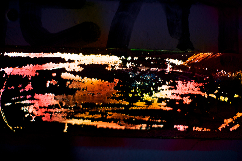 ncsu-expression-013.jpg