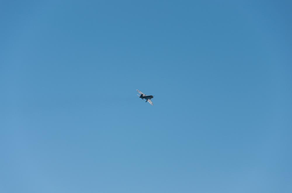 Prowler-0082.jpg