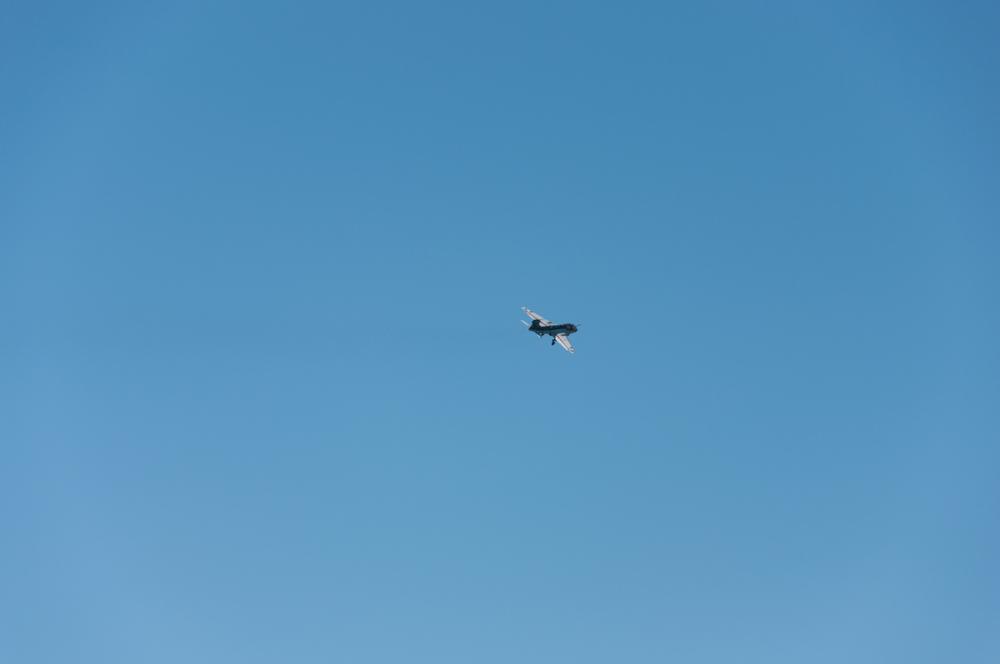 Prowler-0085.jpg