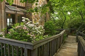 Walkway-by-Lodge.jpg