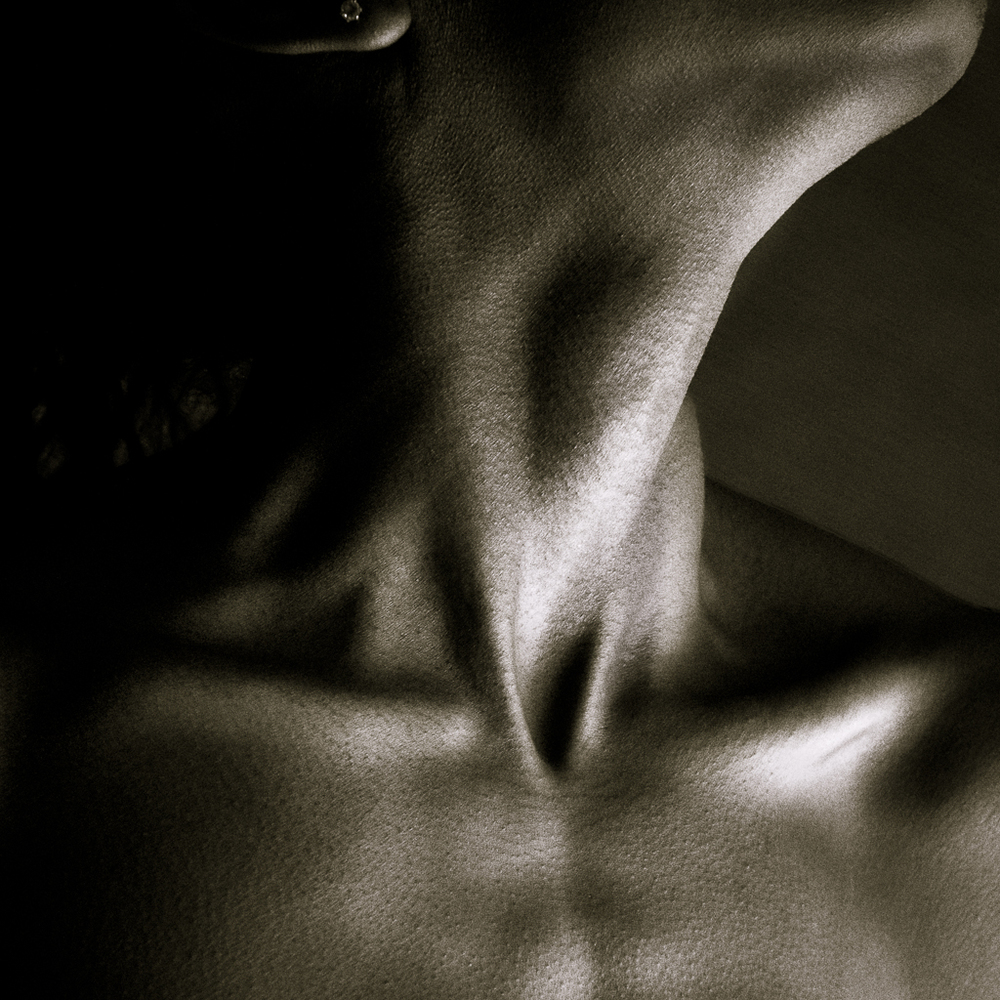 Dacia_Bodyscapes_20140716-3.jpg