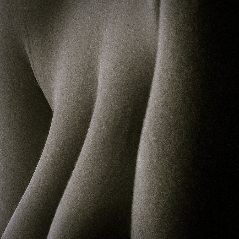 Ginger_Bodyscapes_20140719-6.jpg