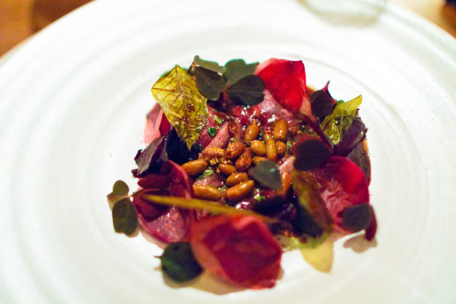 at-last-the-final-dish-of-the-main-course-wild-duck-and-beets-with-beech-and-malt.jpg