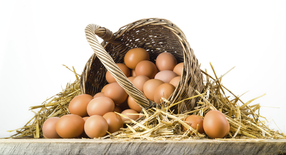 Overconcentrating your investment portfolio is like putting all your eggs in one basket.