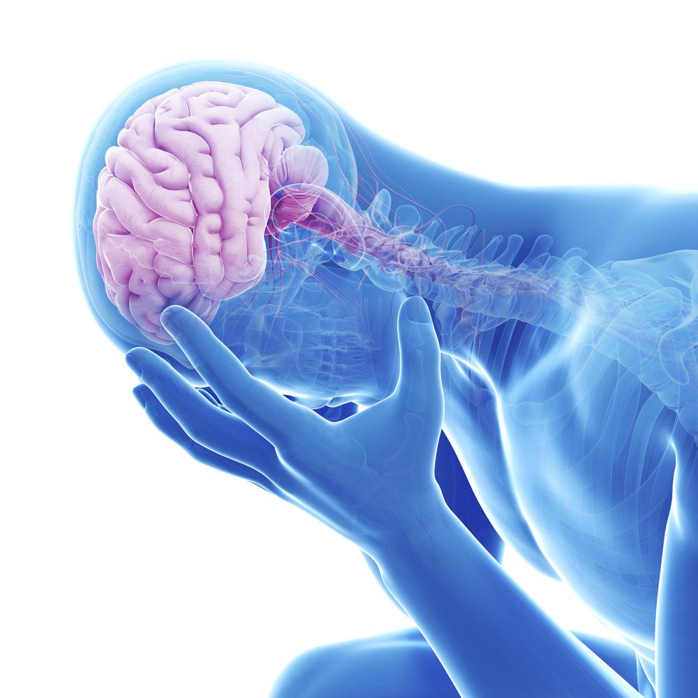 Treatment bacterial meningitis adults