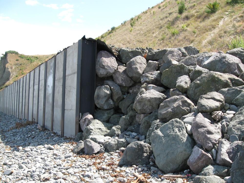 Shoreline Recon 7-7-11 003.JPG