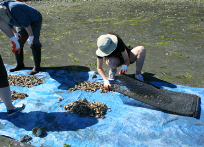 summerbbq6.jpeg