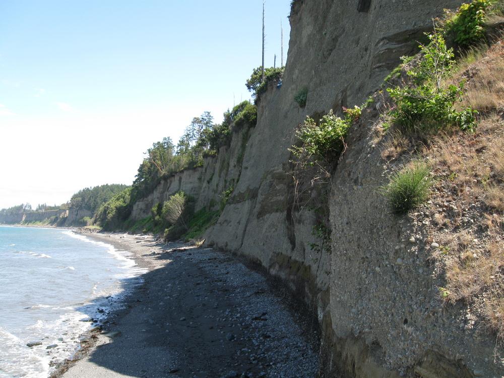 Shoreline Recon 7-7-11 026.JPG