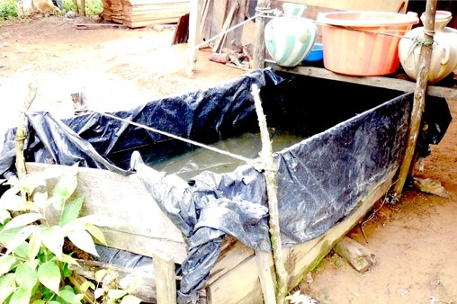 Existing wooden box water supply for the village