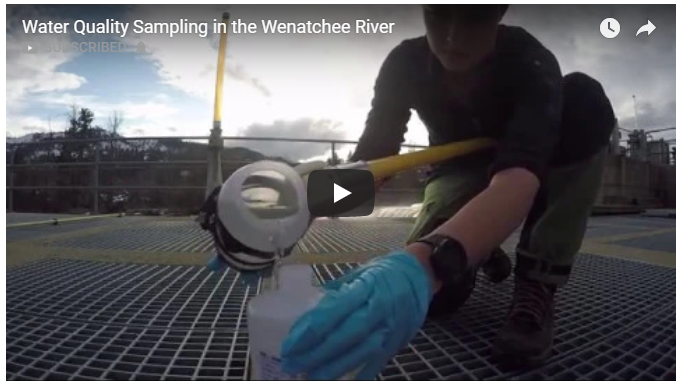 Water Quality Sampling in the Wenatchee River — Aspect Consulting