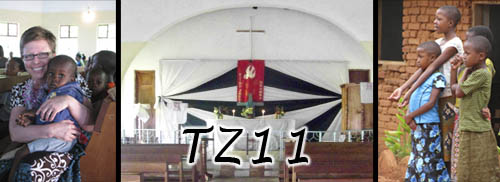 TZ11 webpage header.jpg