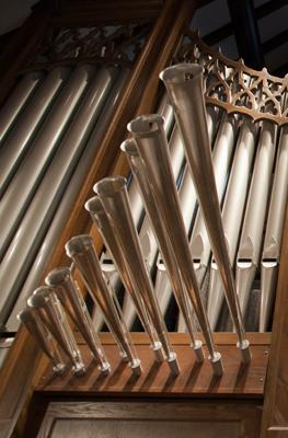 Organ 4.jpg