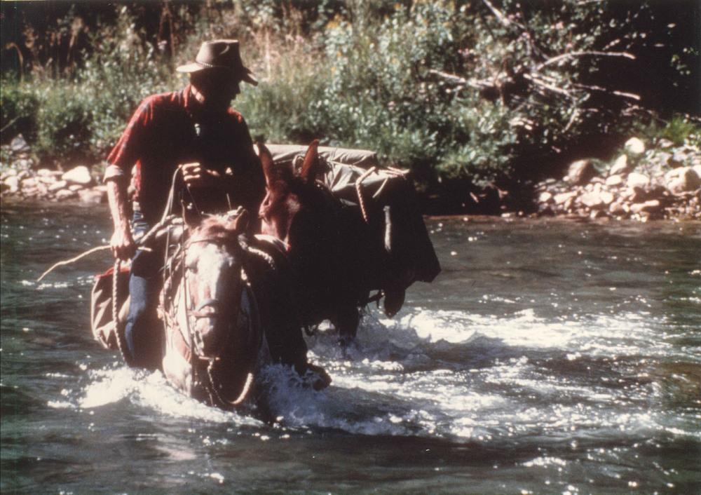 Jeff on horse.jpg