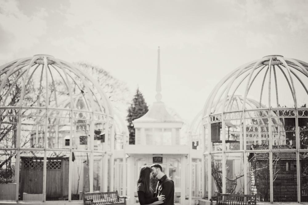 Sophie Evans Photography, Alice & Nathanael Botanical Gardens Engagement Shoot. Warwickshire Wedding Photographer (13).jpg