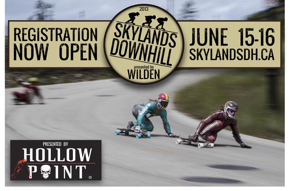 Skylands Reg Poster.jpg