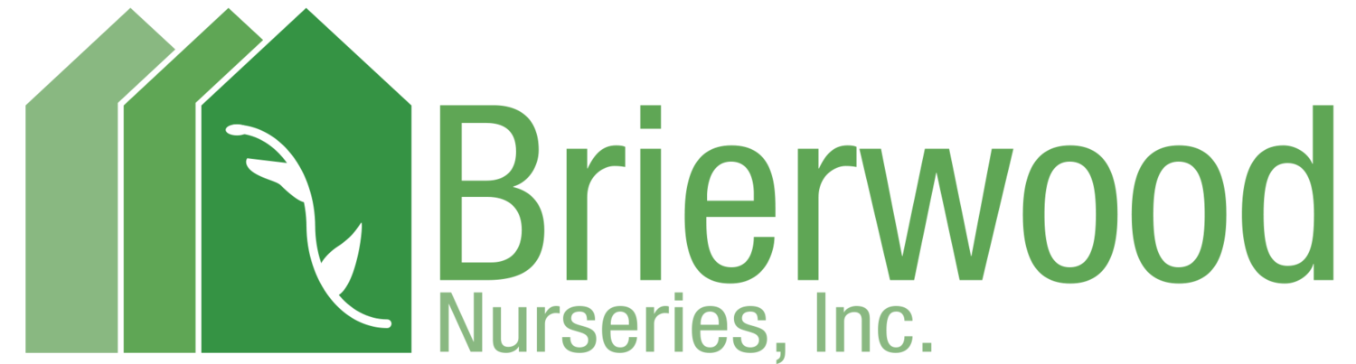 Brierwood Nurseries, Inc.