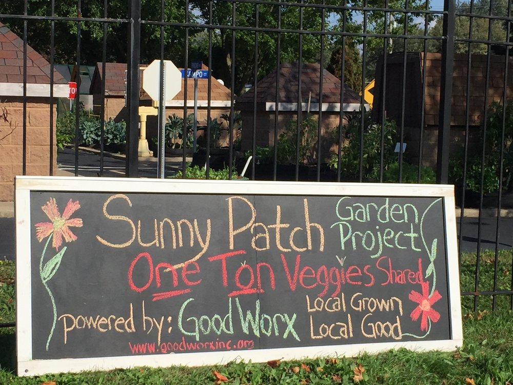 Proudly proclaiming our garden success on our new JUMBO Chalkboard courtesy of Uncle Jim.