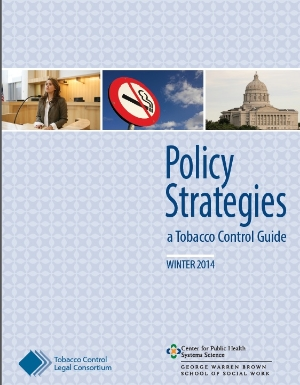 policy-strategies-guide-cover.jpg