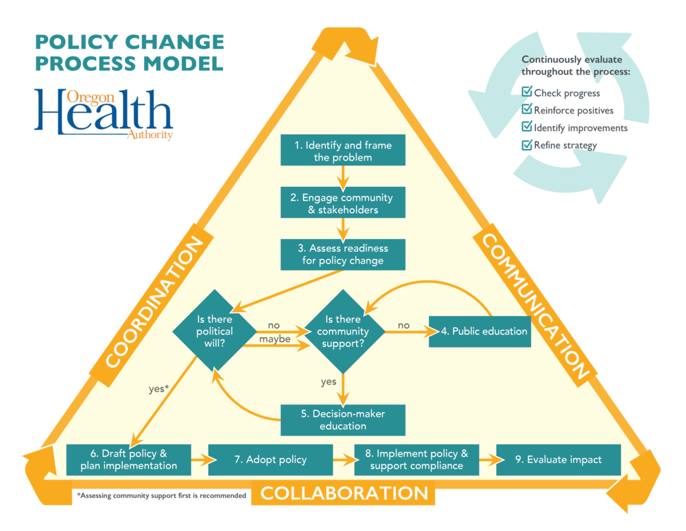 policy change process model rede group