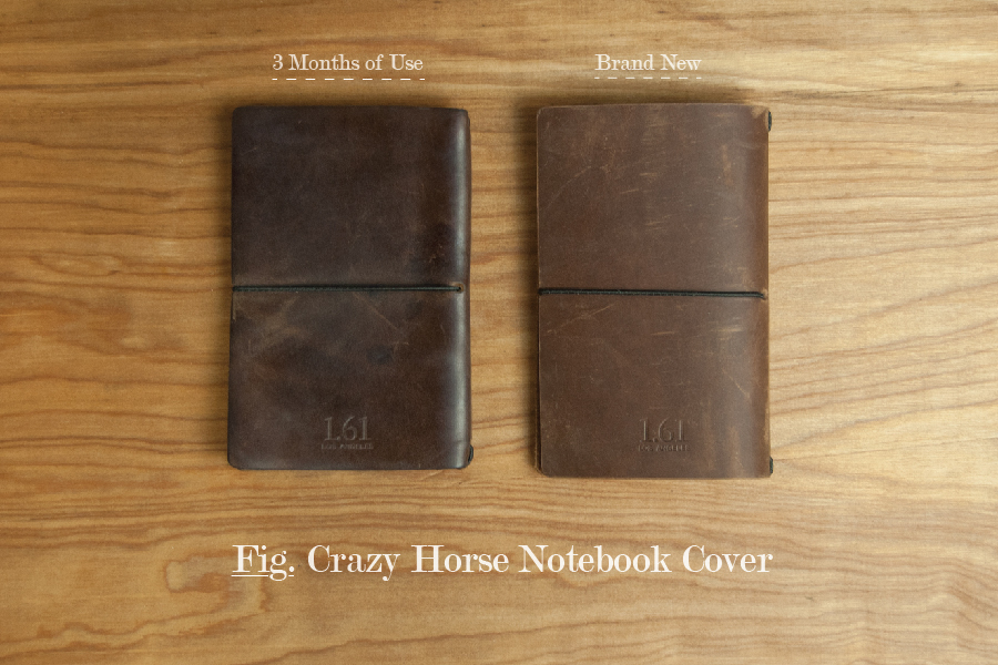 Crazy Horse 4.jpg