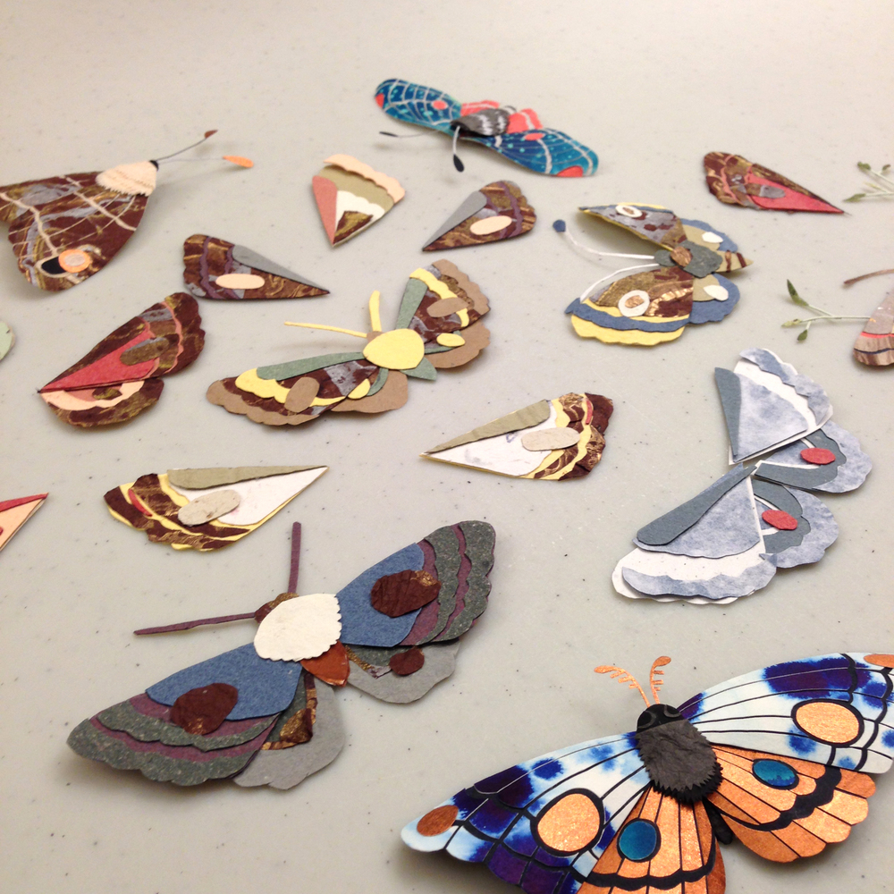 Look at these lovely moths made at my recent moth making workshop! Gorgeous!