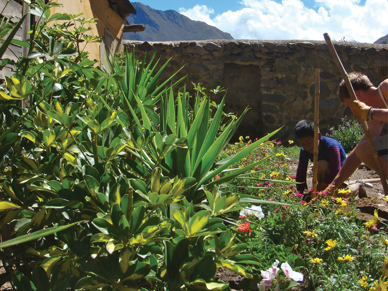 Ollantaytambo Community Garden