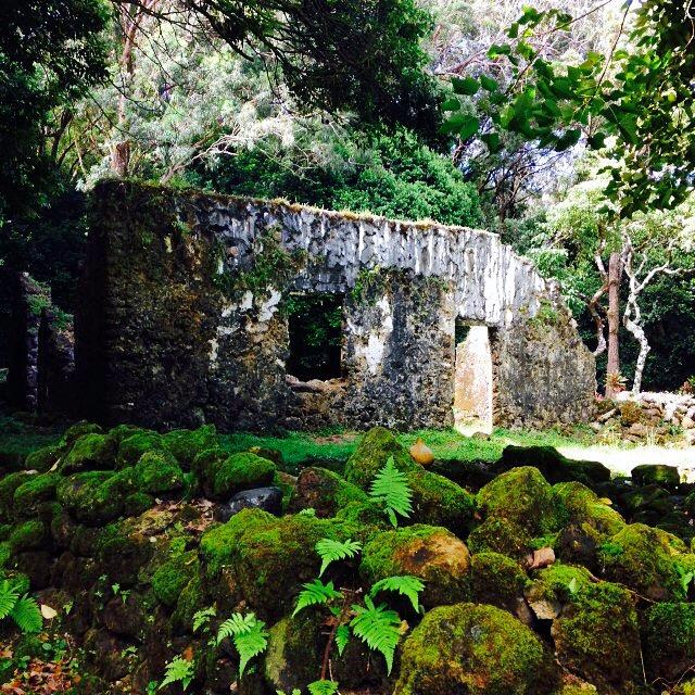 King Kamehameha Summer Palace ruins, Pali HWY, Oahu, Hawaii