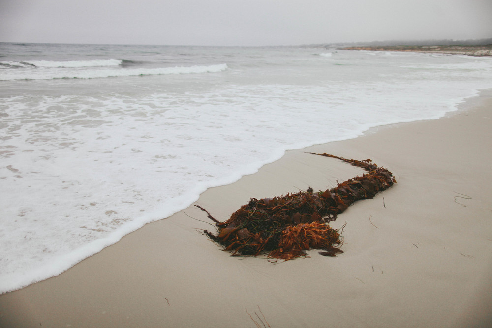 Pebble-Beach.jpg