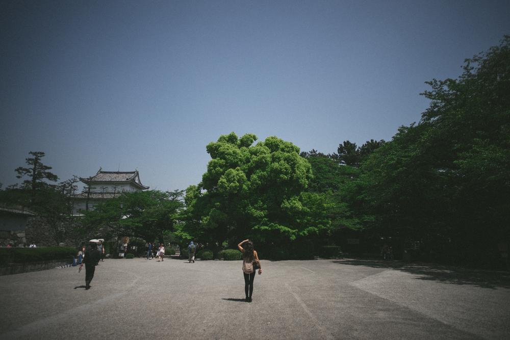 JP_002-7.jpg