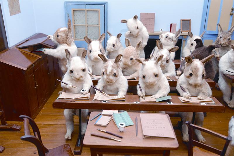 3029798-slide-75-potter-rabbits-writing.jpg