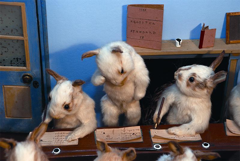 3029798-slide-81-141-potter-rabbits-writing-5.jpg