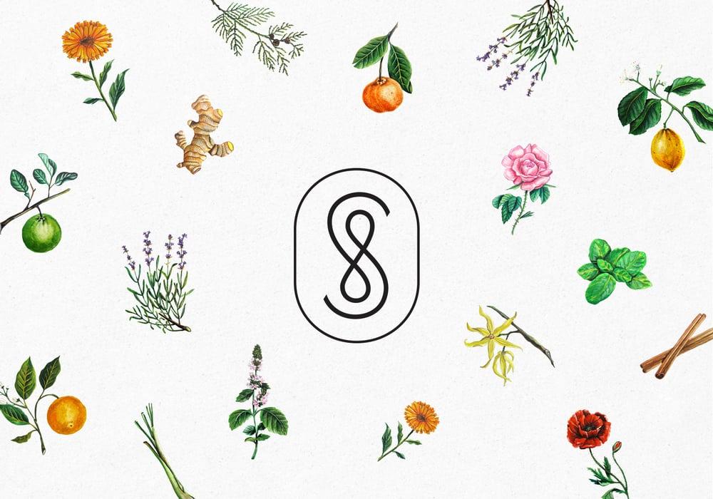 Savon+Stories-02B.jpg