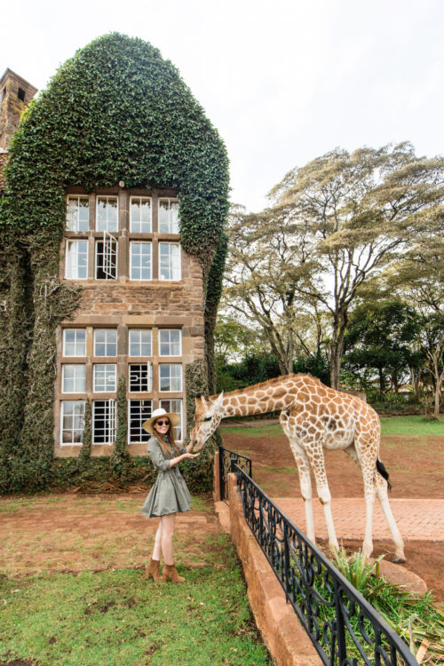 giraffe-manor-on-design-darling-500x750.jpg