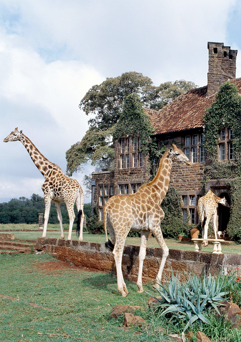 giraffe-manor-lodge.png