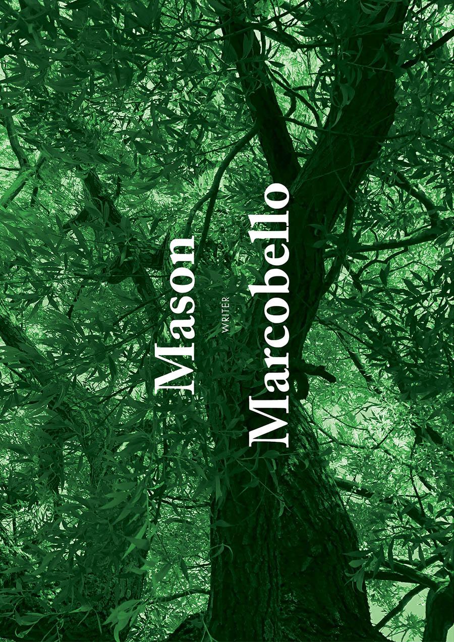 01_Cotton_Issue3_mason.jpg