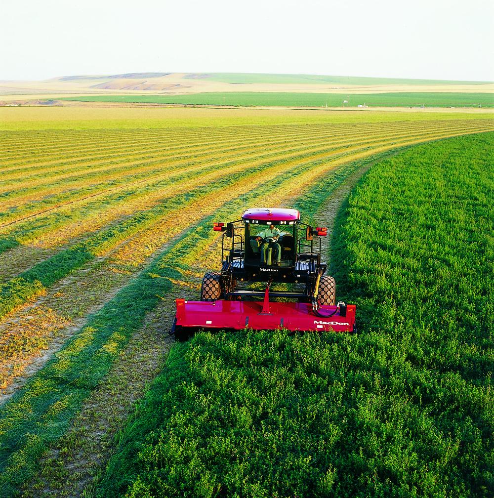 L'agriculture a alimenté la croissance initiale de Winnipeg et continue de contribuer à son succès