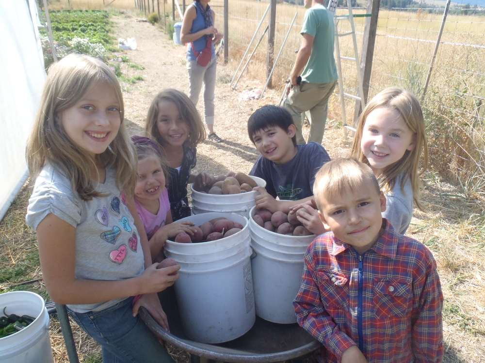Riverwood kids with the day's potato harvest