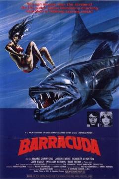 barracuda_1978.jpg