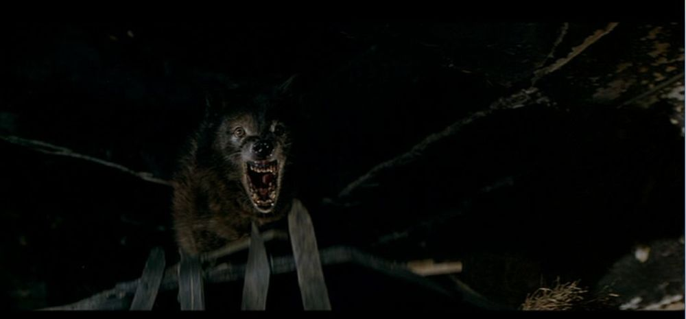 The wolves are much more frightening than their POV shots.