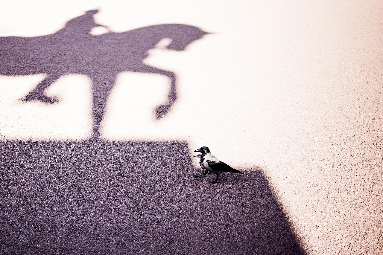 A walk in the sun.