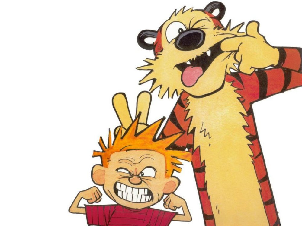 """The World is a Complicated Place, Hobbes"""